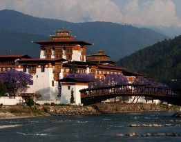 Punakha Dzong during Summer