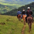 Canter-and-gallop-on-horses-in-Bumthang